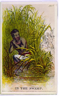 Slave hiding in the swamp