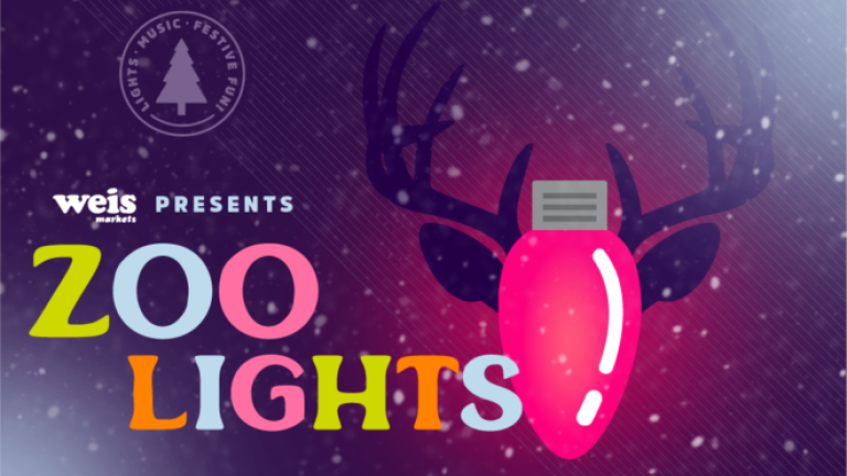 Weis Presents ZOO LIGHTS logo