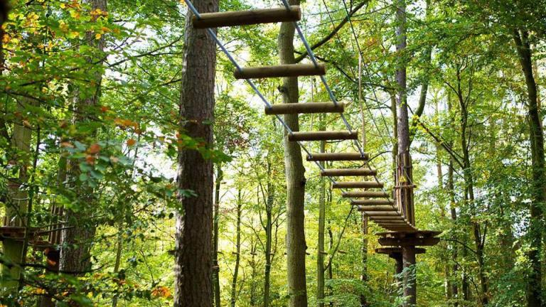 For zip lining and active fun outdoors, head to the Go Ape Treetop Adventure Course in Rockville.