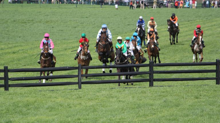 The Maryland Hunt Cup, a steeplechase race run on the last Saturday in April, has become a popular spectator event. Tailgating is a favorite way to watch the race.