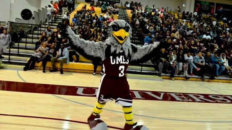 University of Maryland Eastern Shore Mascot