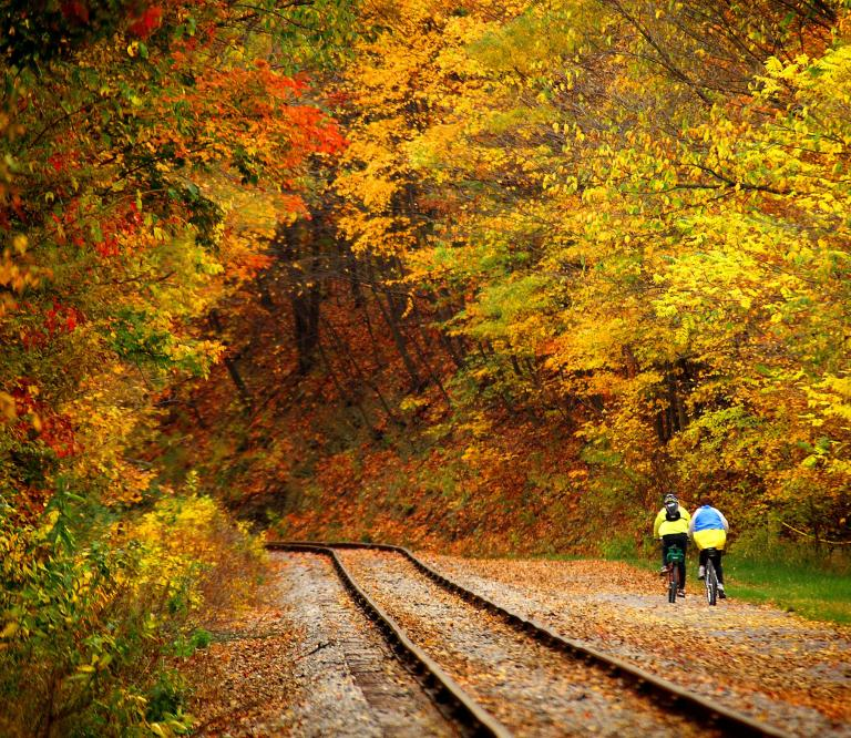 Bike Trail and Tracks of Maryland