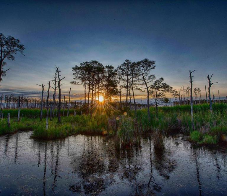 Blackwater National Wildlife Refuge at Sunrise
