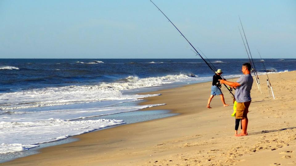 Fish in the Atlantic from peaceful Assateague