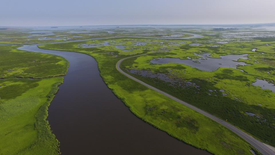 Drone view of Blackwater National Wildlife Refuge