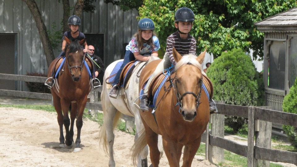 10 Places To Learn To Ride Horses Visit Maryland