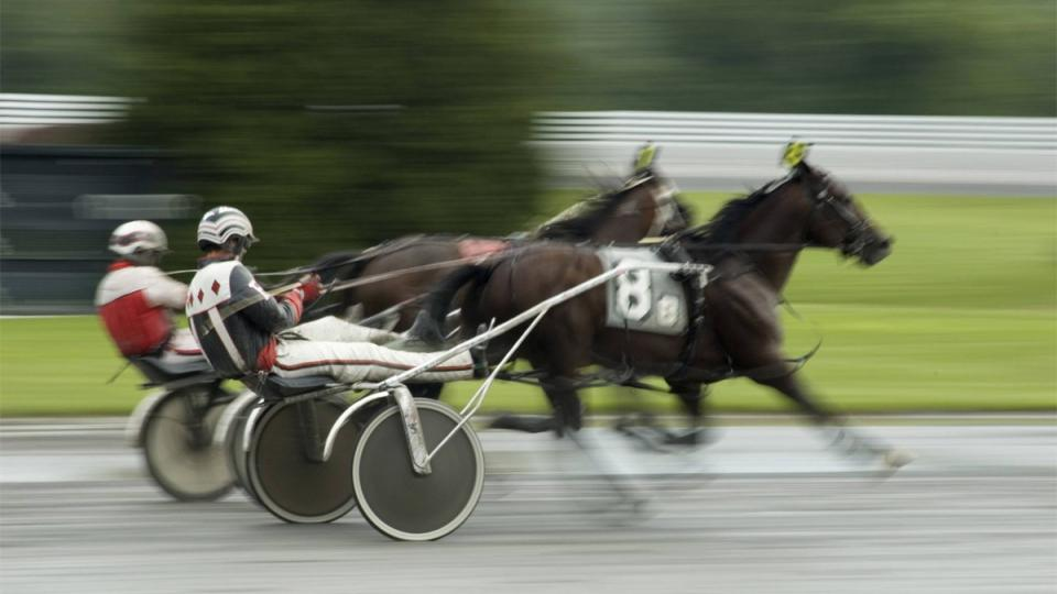 harness racing track