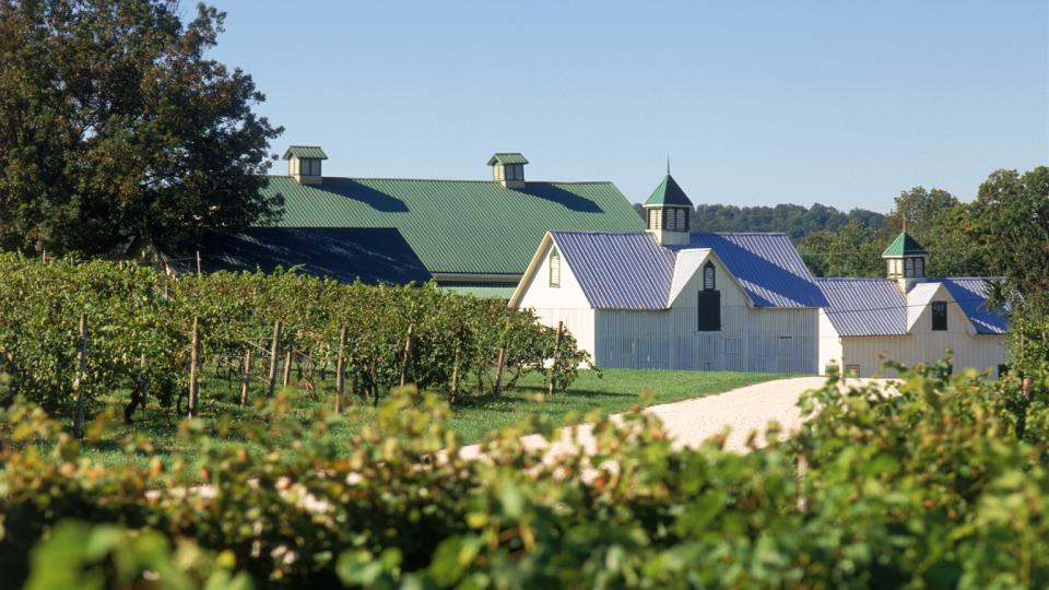 Just outside of Baltimore, Boordy Vineyards is a fantastic stop along Maryland's wine trails featuring award-winning wines.