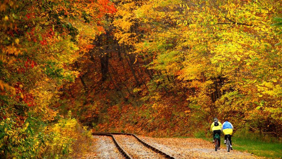 Bike Trail and Tracks of Maryland