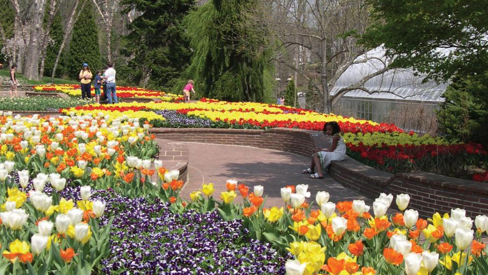 """Hop"" over to these public gardens in Spring (and other times of year) to see hundreds of blooms."