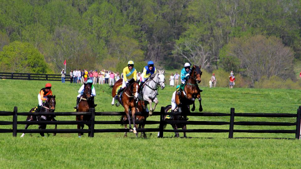 The Maryland Hunt Cup