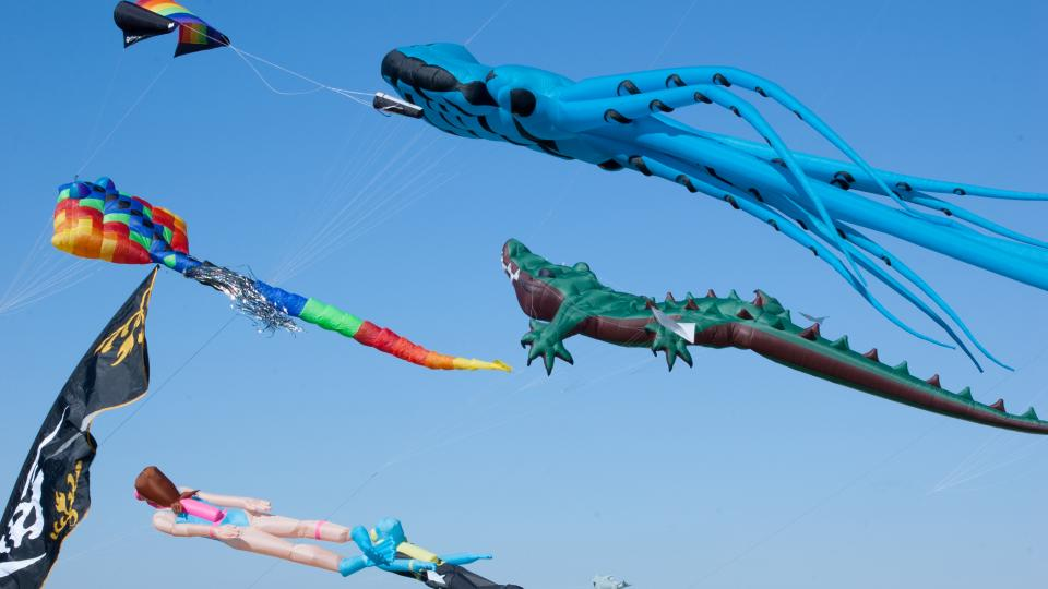 Maryland International Kite Expo
