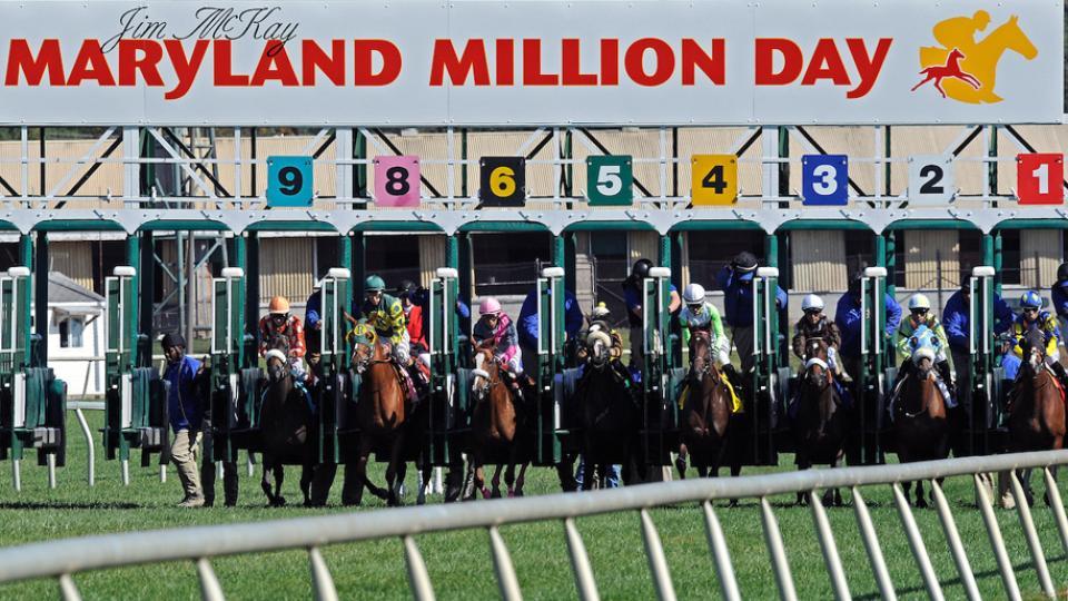 Jim McKay Maryland Million Horse Race