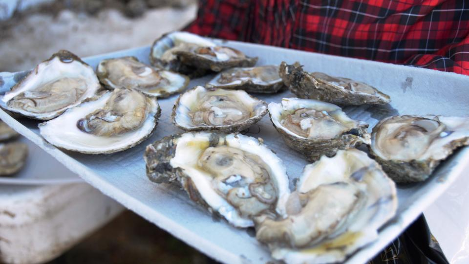 OysterFest at Chesapeake Bay Maritime Museum