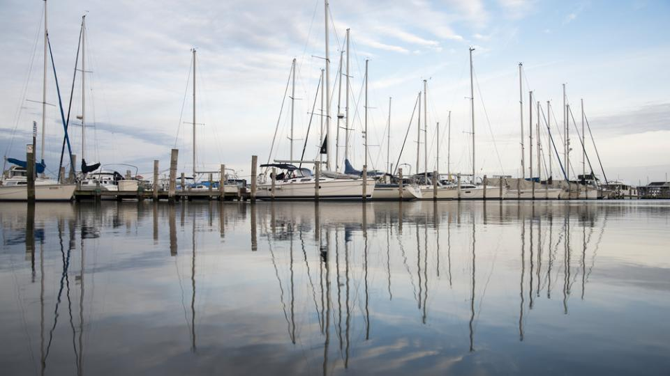 Marina with Boats in Queen Anne's County