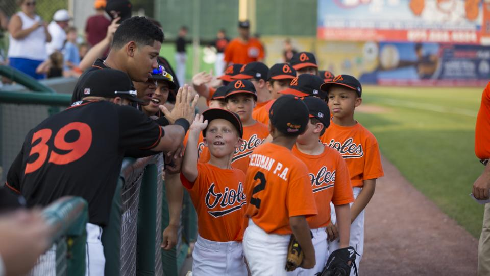 Shorebirds Little League