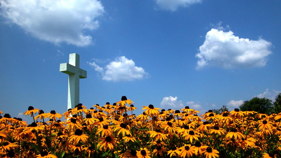 St. Clement's Cross Surrounded by Black-Eyed Susans