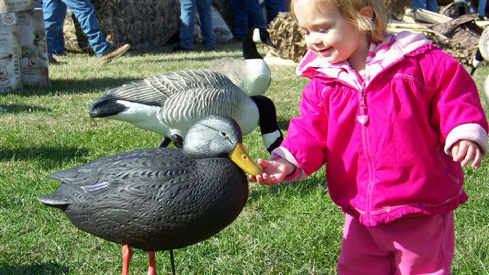 Little girl feeding a duck at the Waterfowl Festival