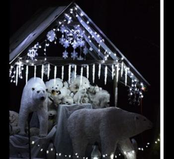 Polar Bear display in holiday lights Photo