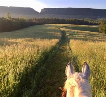 On trail at Valley Meadow Farms with view of Sideling Hill. Bring your own horse trail getaway. Photo
