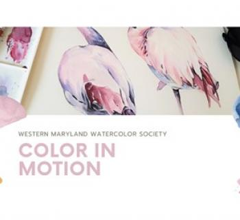 Color in Motion Photo