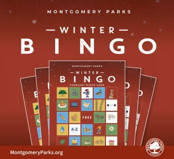 Montgomery Parks Virtual Winter Bingo Photo