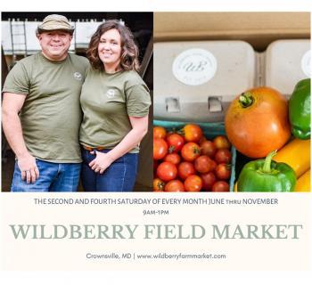 Wildberry Field Market Photo