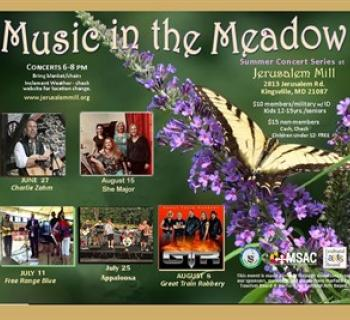 Music in the Meadow Concert Poster Photo