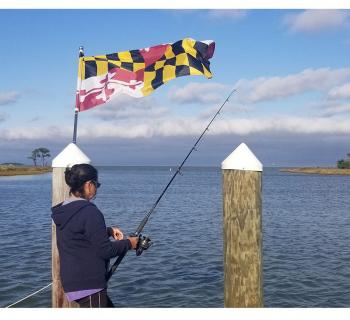 Woman fishing from pier in Maryland Photo