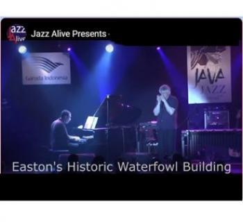 Jazz Harmonica Virtuoso Hendrik Meurkens on Stage Photo