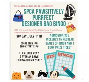 Purrfect Designer Bag Bingo - Anne Arundel County SPCA Photo