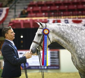 Scott Stewart and Catch Me earn championship honors at the Capital Challenge Horse Show. Photo