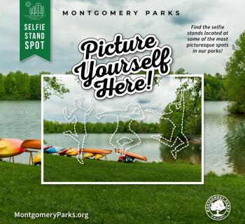 Montgomery Parks Selfie Stand Graphic Photo