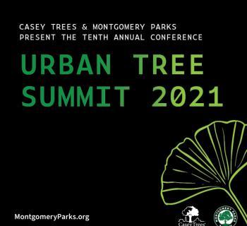 Urban Tree Summit 2021 Photo