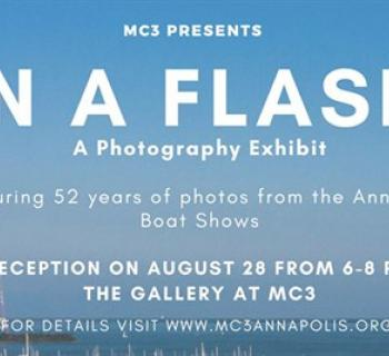 In a Flash Photography Exhibit Poster Photo