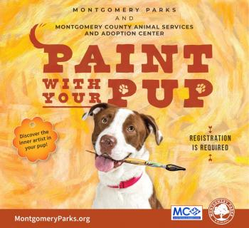 Paint with your Pup Graphic Photo