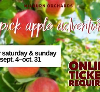 U-Pick Apples at Milburn Orchards poster with apples Photo