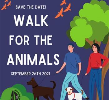 Walk for the Animals drawing shows two people and two dogs walking Photo