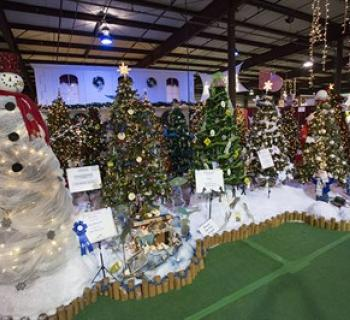 Decorated Trees on display at Festival of Trees. Photo