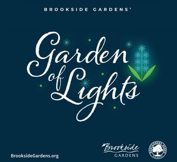 Brookside Gardens Garden of Lights Photo