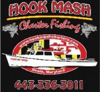 Hook Mash Logo Photo