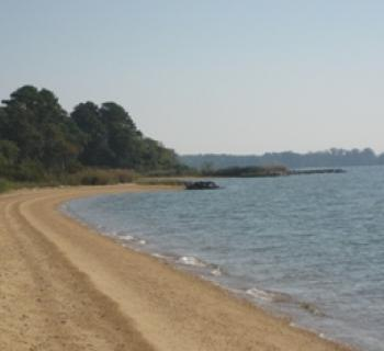 Newtowne Neck State Park Photo