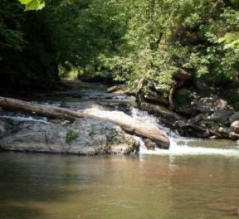 Gunpowder Falls State Park Photo