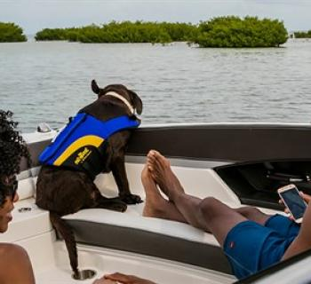Couple with their dog relaxing on a boat  Photo