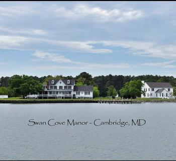 Swan Cove Manor Photo