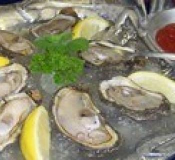 Shucked oysters Photo