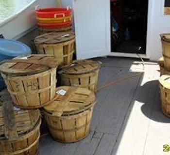 Baskets of crabs Photo