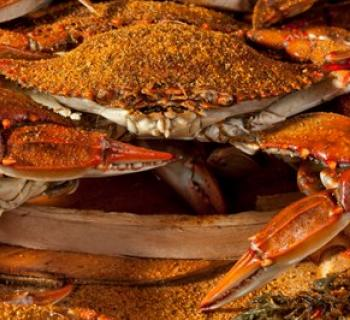 Steamed crabs Photo