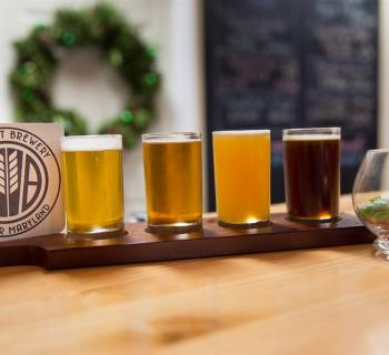 Samples of AleCraft Brewing beers Photo