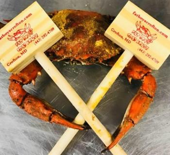 Crab with mallets Photo